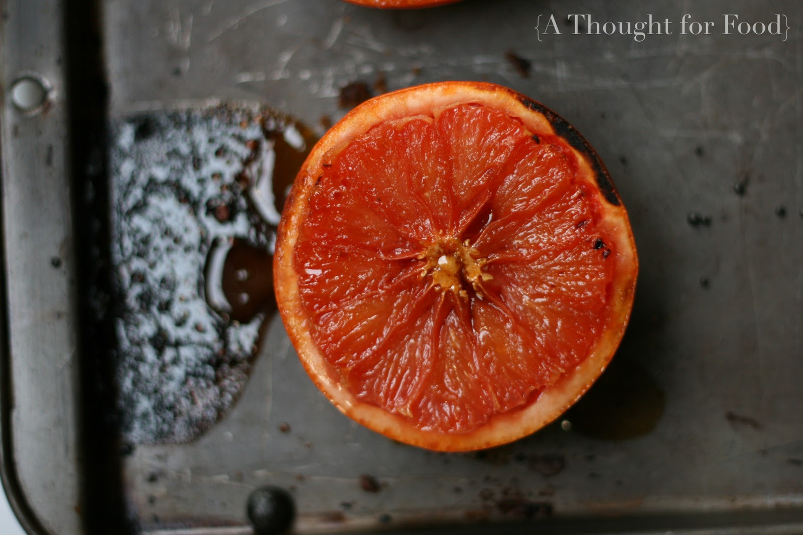 Recipe: Broiled Grapefruit with Brown Sugar and Ginger} » A Thought ...