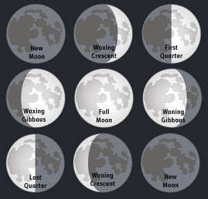 moon diet february