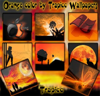 Orange Colour by Trappic