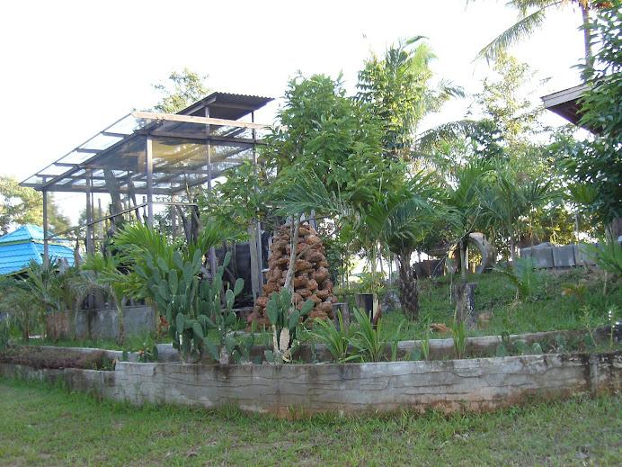 Taman Anggrek