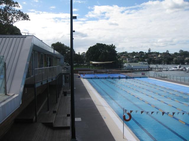 Swimming cabarita pool for Chicken swimming pool