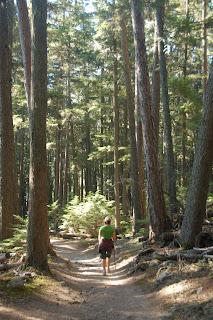 Tami, the hiking machine