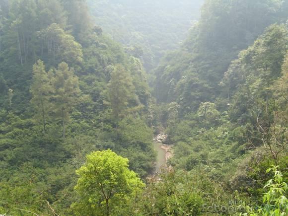 Hutan Raya Djuanda