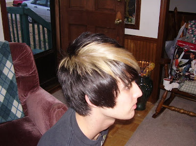 Emo boys hairstyle 2008