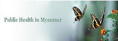 Public Health In Myanmar