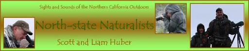 North-state Naturalists