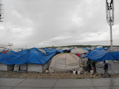 A Tent City in Port au Prince