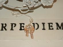 Mitt silversmycket!