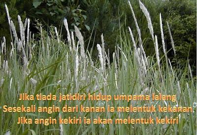 Cakna Sayang Jangan Doakan Bencana Untuk Satukan Orang Melayu Yang Sedang Berpecah