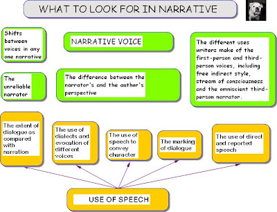 Narrative voice essay