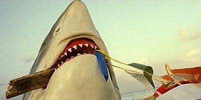 shark.jpg (400×200)