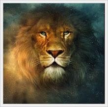 Ele é o Leão da Tribo de Judá...