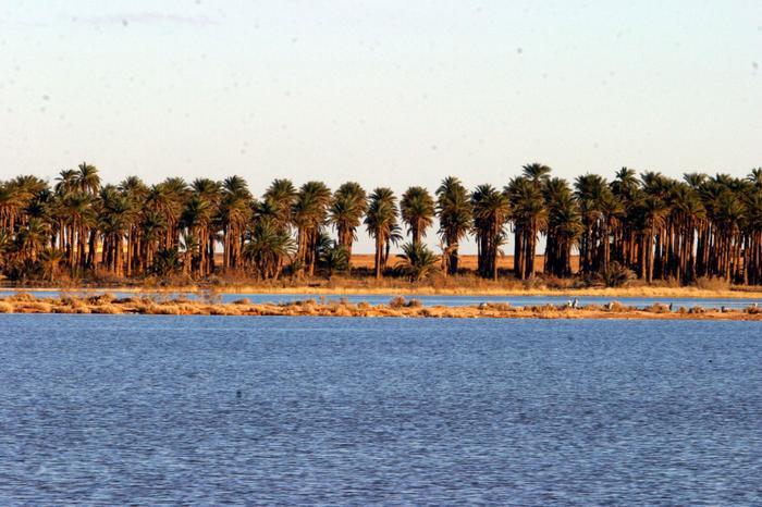 جوهرة الصحراء  مدينة الف قبة و قبة 11