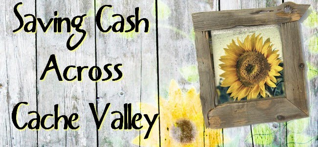 Savings Across Cache Valley