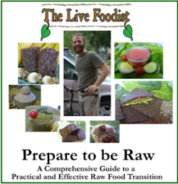 Raw Food Transition E-Book