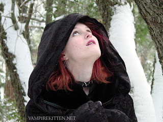 Vampire Kitten