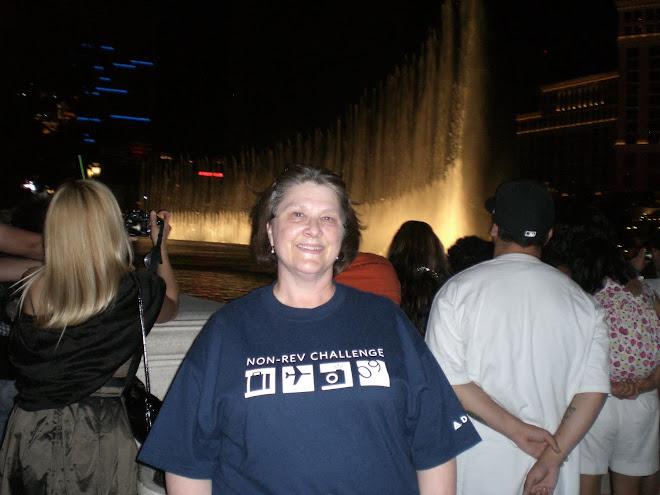 At the Bellagio Fountain