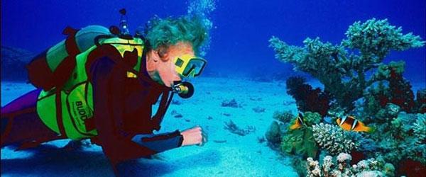 Deportes bajo el Agua: Buceo