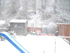 Lots of snow on 5 January 2010