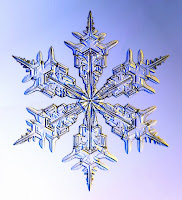 Floco de Neve, snowflake