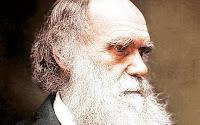 Sondagem Darwin Poll