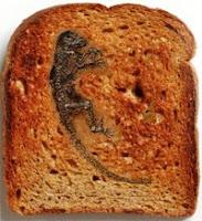 Darwinius masillae - Ida - toast