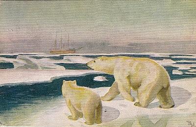 Polhavet Eisbär