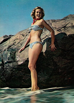 Bikini Pin-Up Girl