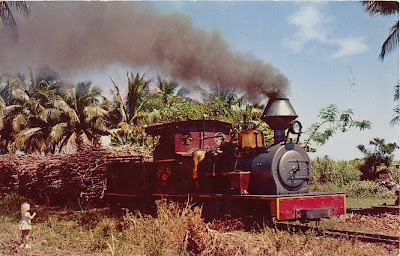 Sugar Cane Train Fiji