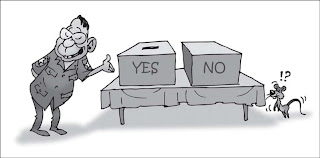 >Harn Lay's cartoon on May 10 voting