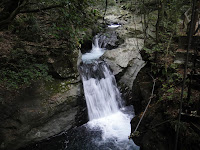 河津七滝 かに滝