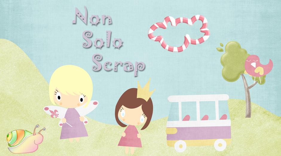 NonSoloScrap