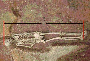 Hombre mas alto de la prehistoria