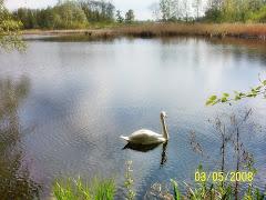 Moja druga pasja, to nasze polskie jeziora!