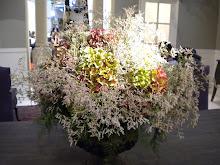 Blommor i butiken