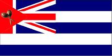 Bandera de Nuevo Songo del Norte