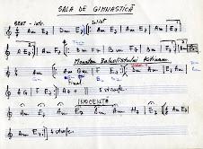 Filă cu transpunerea pe note a unor melodii