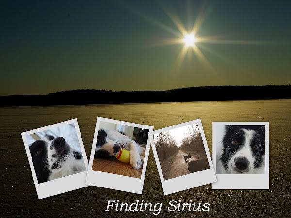 Finding Sirius