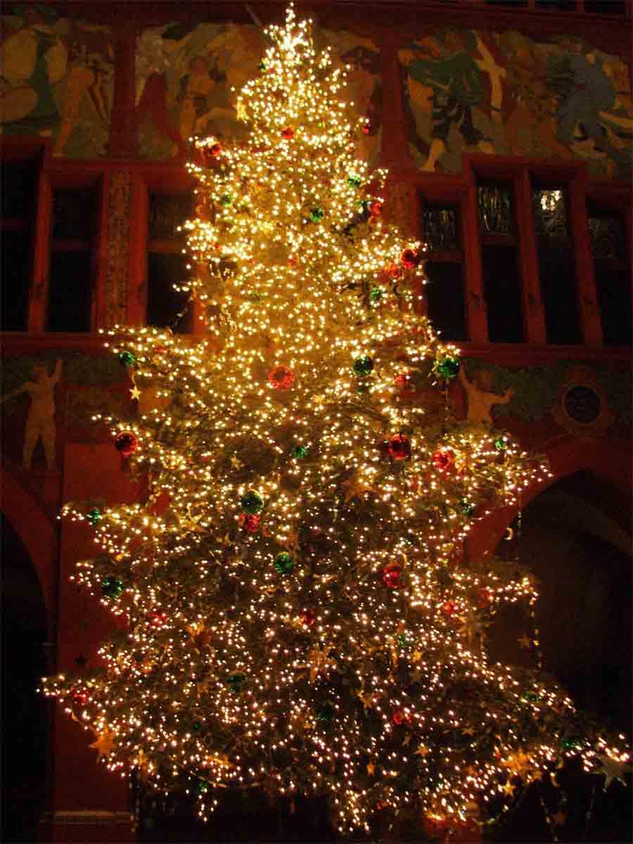 http://3.bp.blogspot.com/_9zpAPenigNs/TRPPU3u30lI/AAAAAAAAACw/mSiRZ7avrYM/s1600/christmas-tree1.jpg