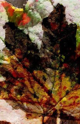Janet Planet Designs digital collage
