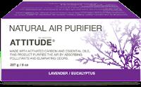 ATTITUDE Natural Air Purifier