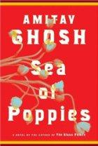 [sea+of+poppies.jpg]