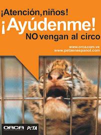 AYUDALES! NO VEAS CIRCOS CON ANIMALES