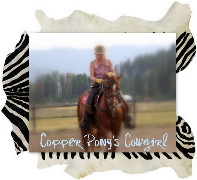 copperponyscowgirl.blogspot./