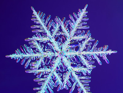 Fotomikroskop kullanılarak elde edilen kar kristalleri resimleri