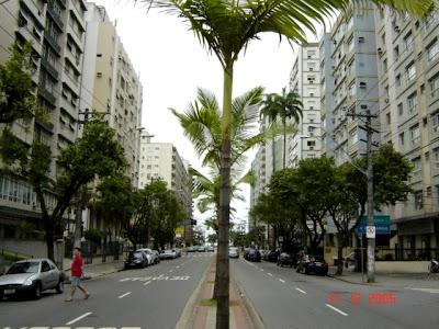 Avenida Conselheiro Nébias, em frente ao Carrefour. Foto de Emilio Pechini