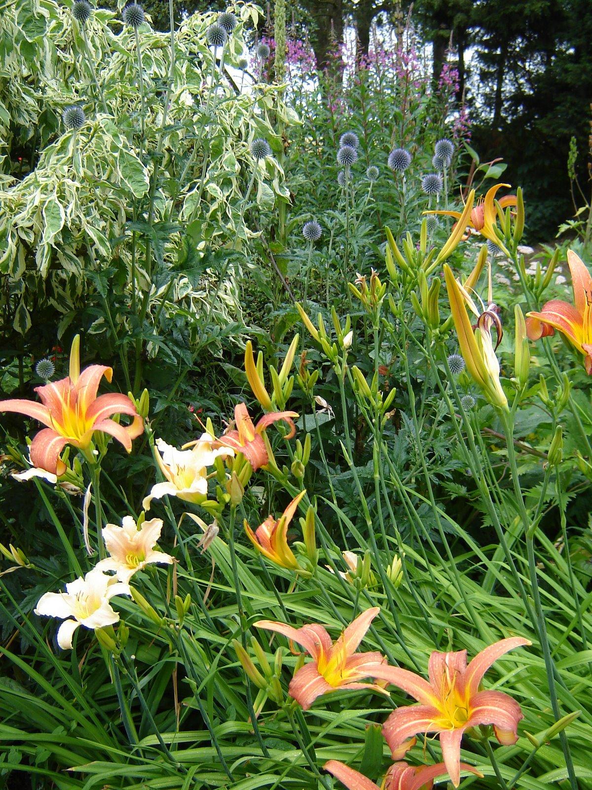 Jardin de la sauvagine le th tre au jardin les trois - Les trois coups au theatre ...