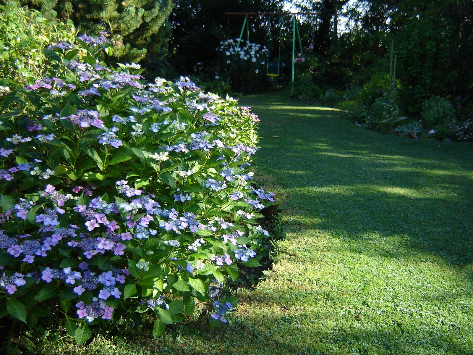 Jardin de la sauvagine les rendez vous de juillet flore for Jardin et vous