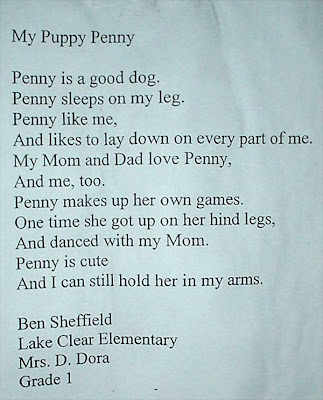 Ben produced some lovely poems at school, which I am sharing with you.