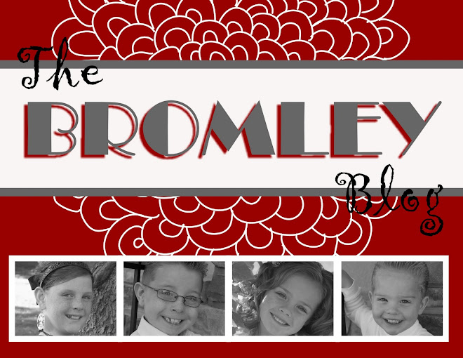 The Bromley Blog